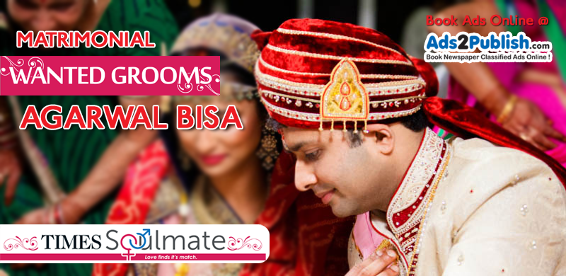 toi-agarwal-bisa-matrimonial-wanted-groom-ad-samples